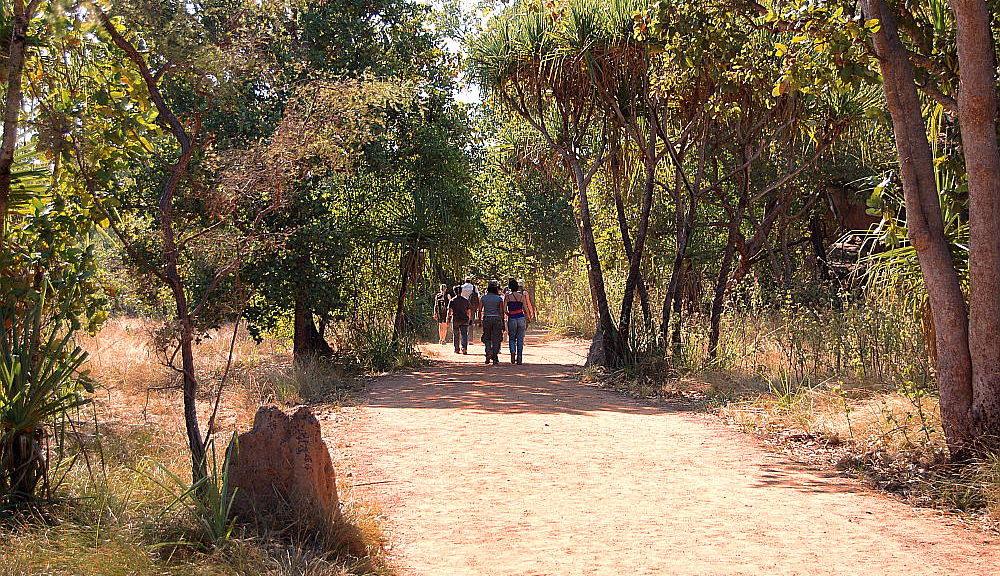 Going walkabout in Kakadu National Park, Australia