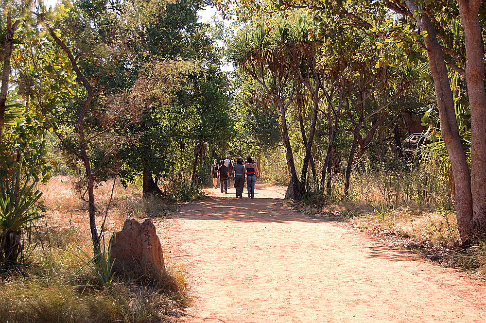Going walkabout in Kakadu National Park, Australia